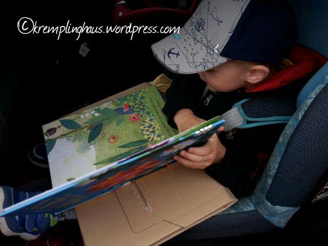 Kind schaut Bienenbuch an