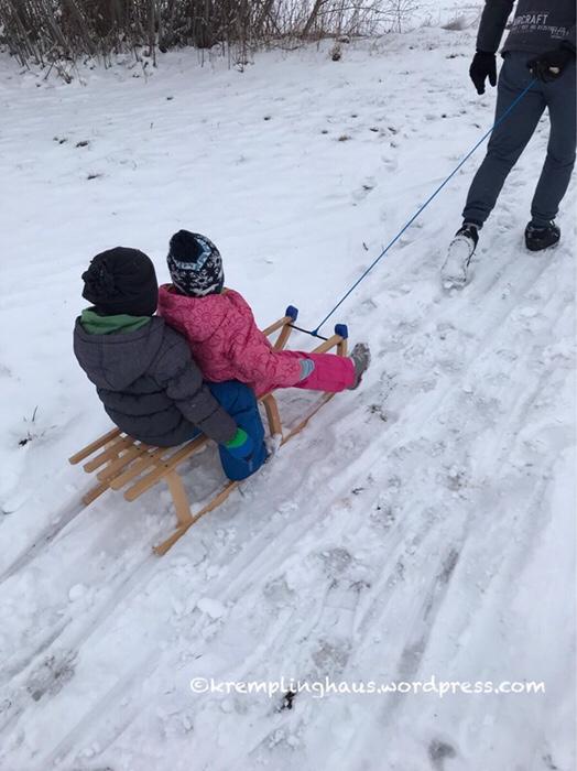 Winterfreuden, Schnee, Schlitten, rodeln