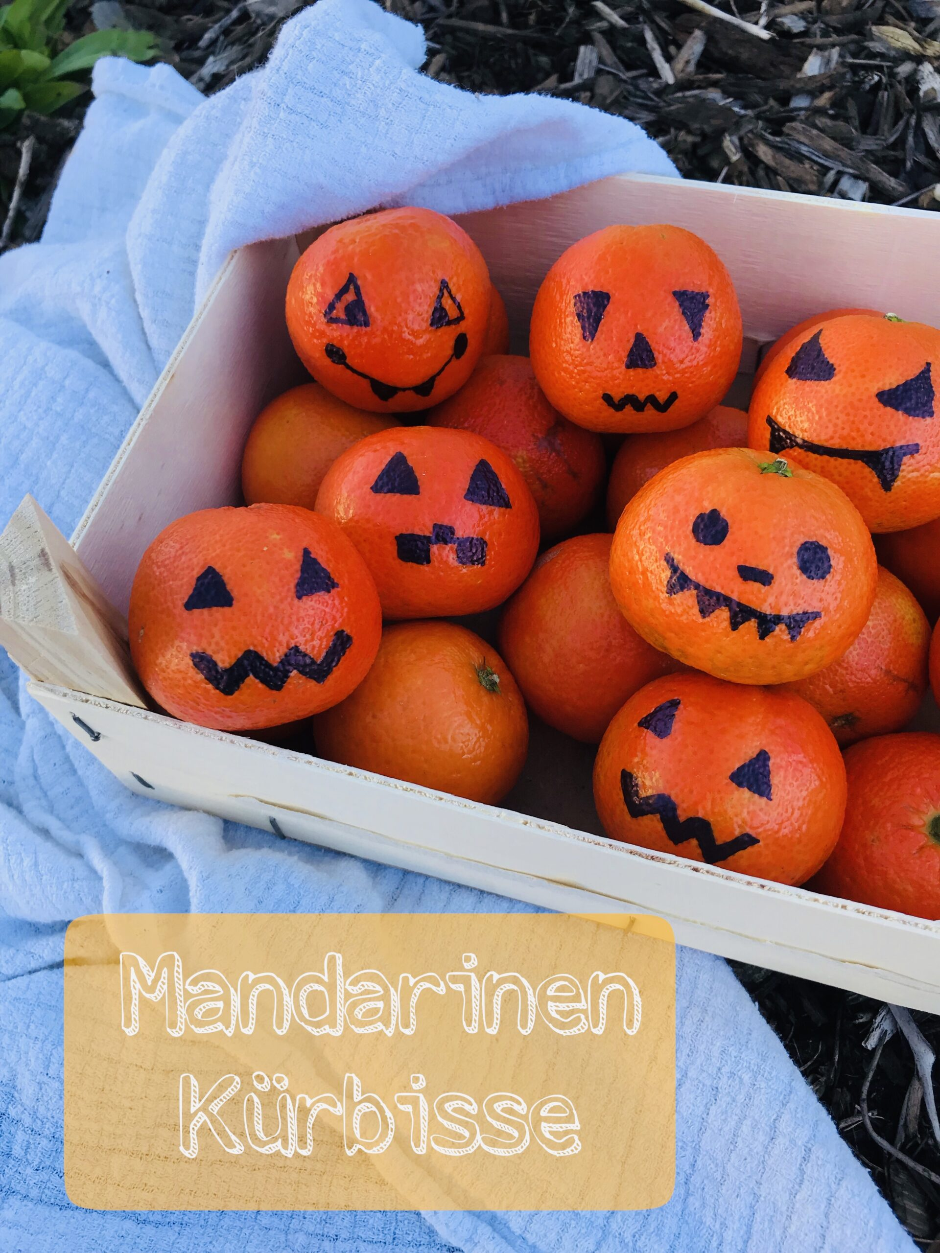 Mandarinen Kürbisse