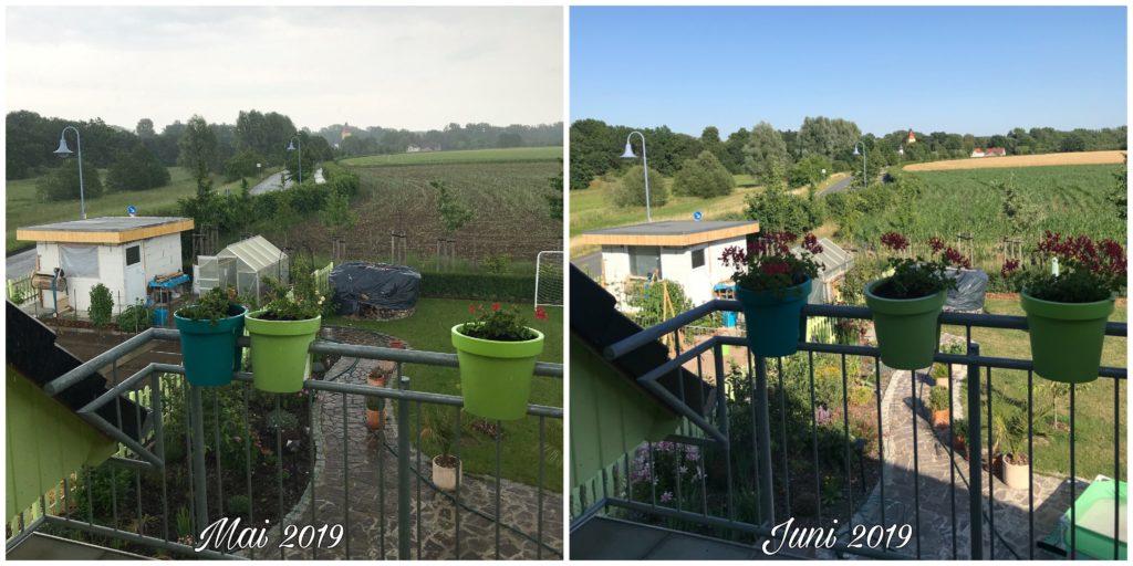 Balkon Mai versus Juni