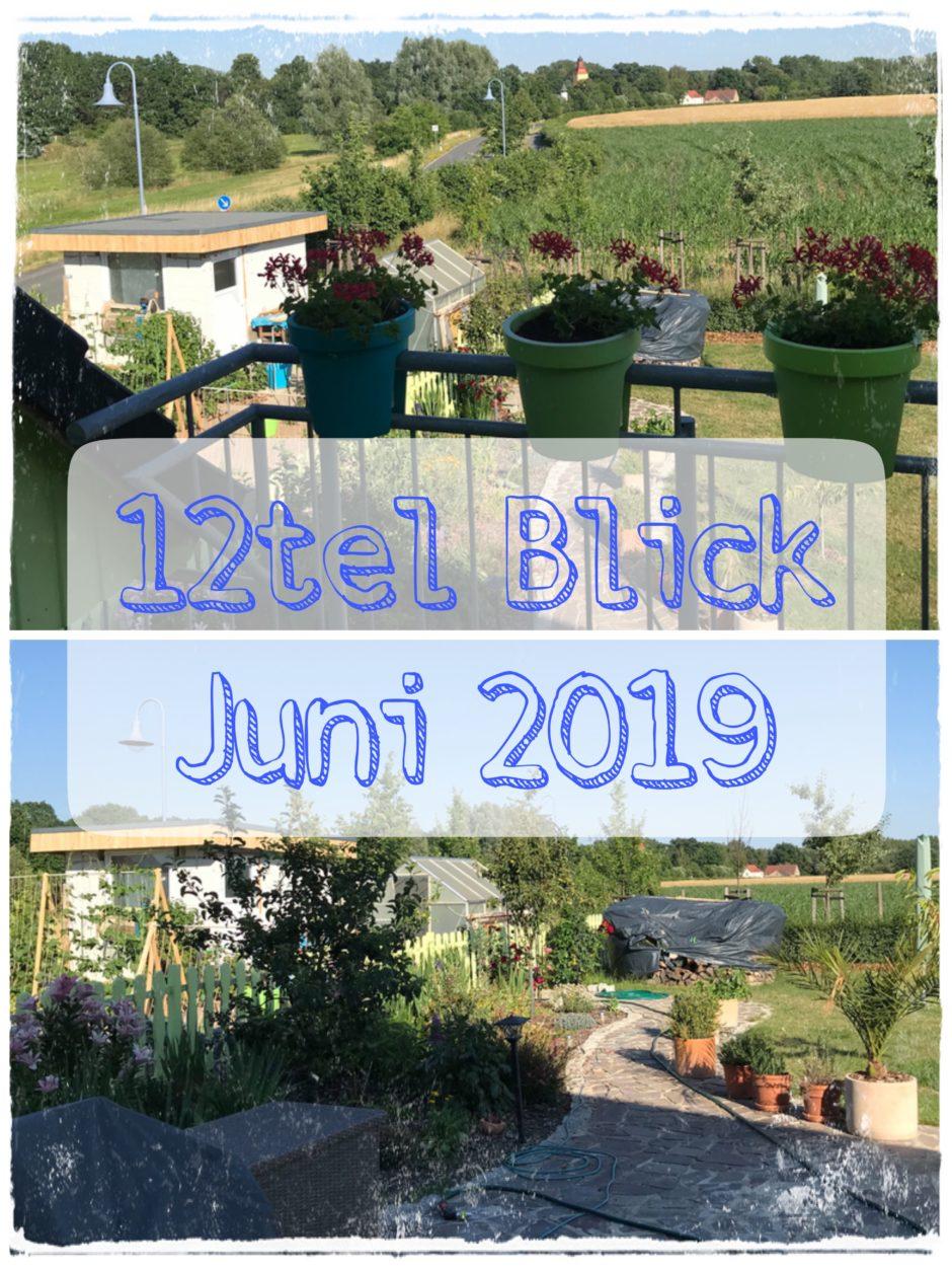 12tel Blick Juni 2019