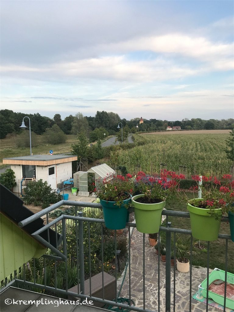 Balkonblick August 2019