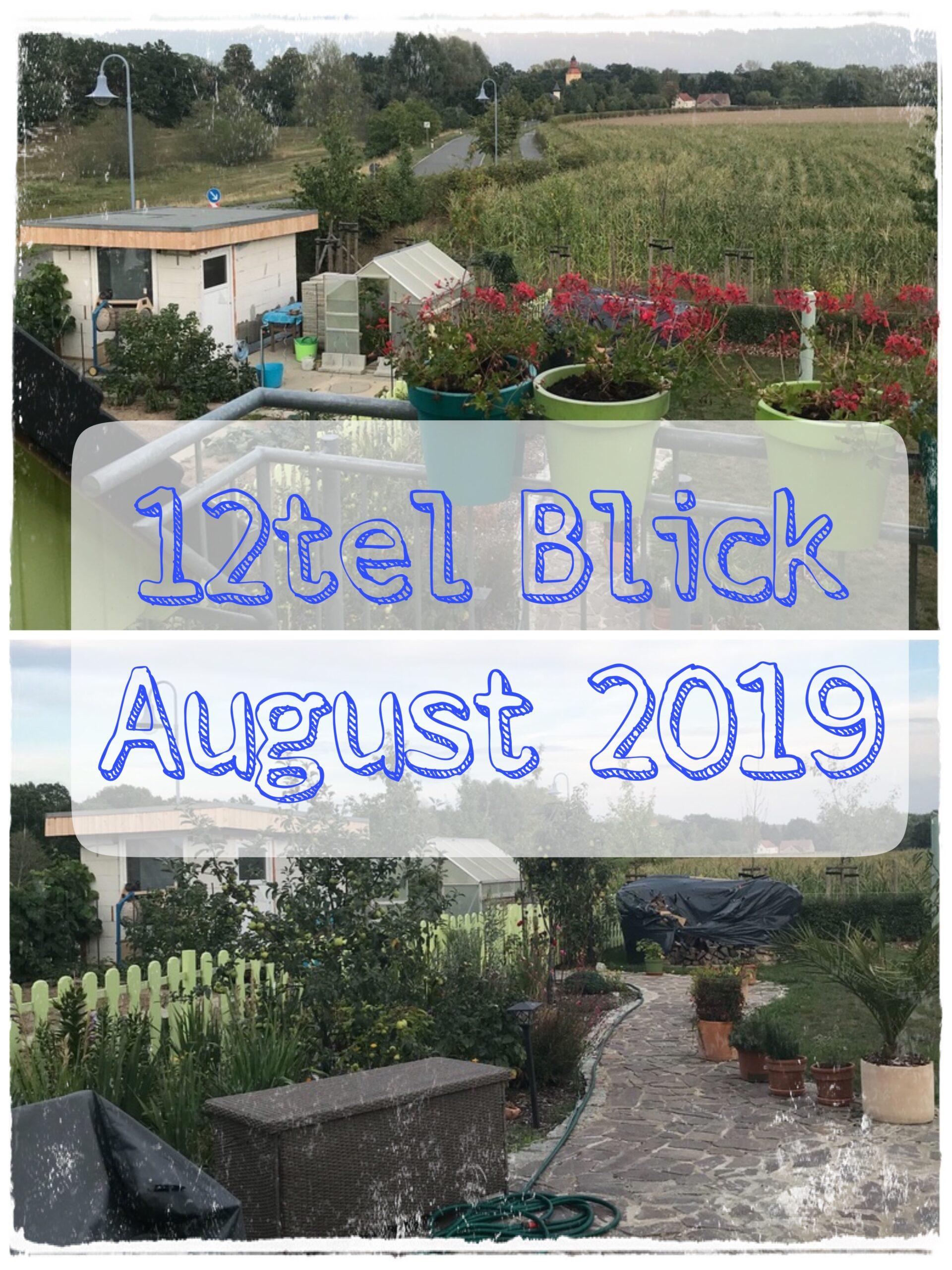 12tel Blick August 2019