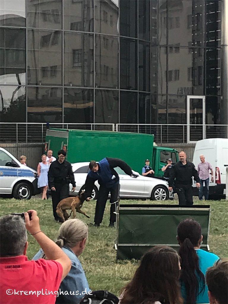 Polizeiübung mit Hunden