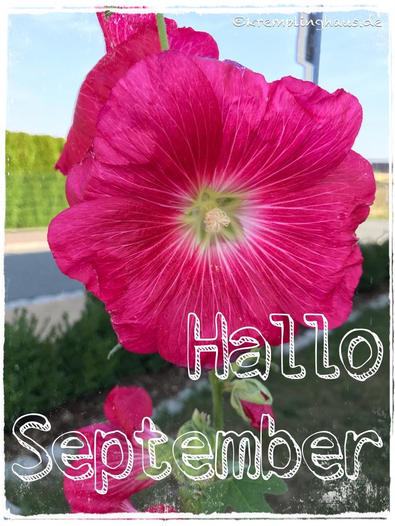 Hallo September 2019