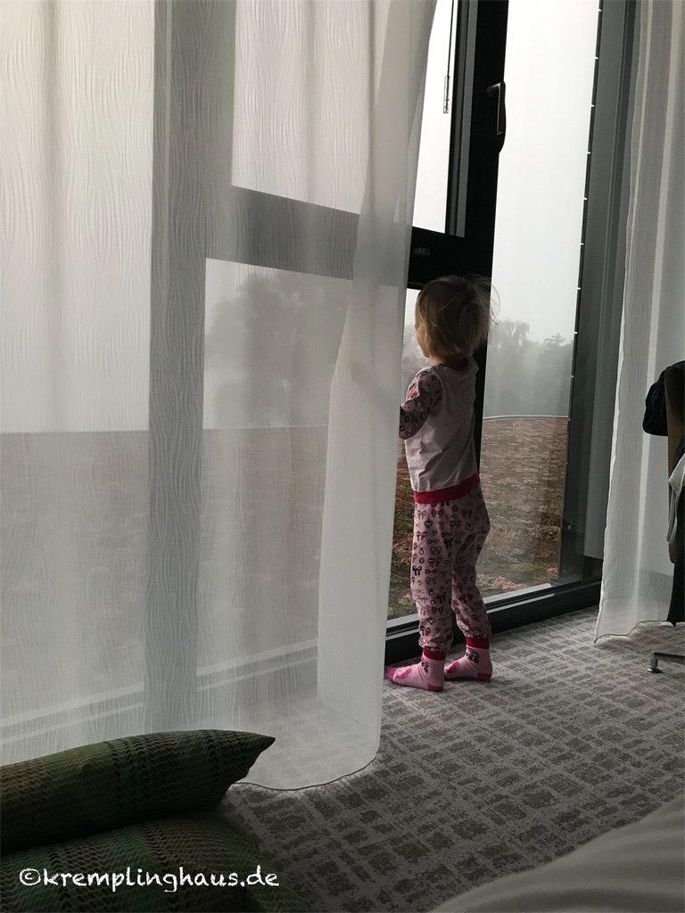 Morgendlicher Ausblick aus dem Fenster