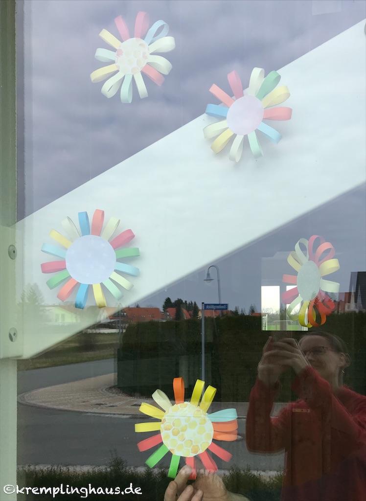 Bunte Fensterblumen