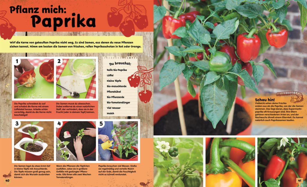 Paprika anpflanzen