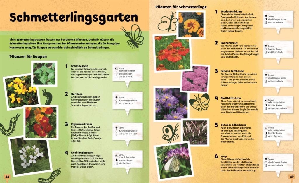 Übersicht Schmetterlingsgarten