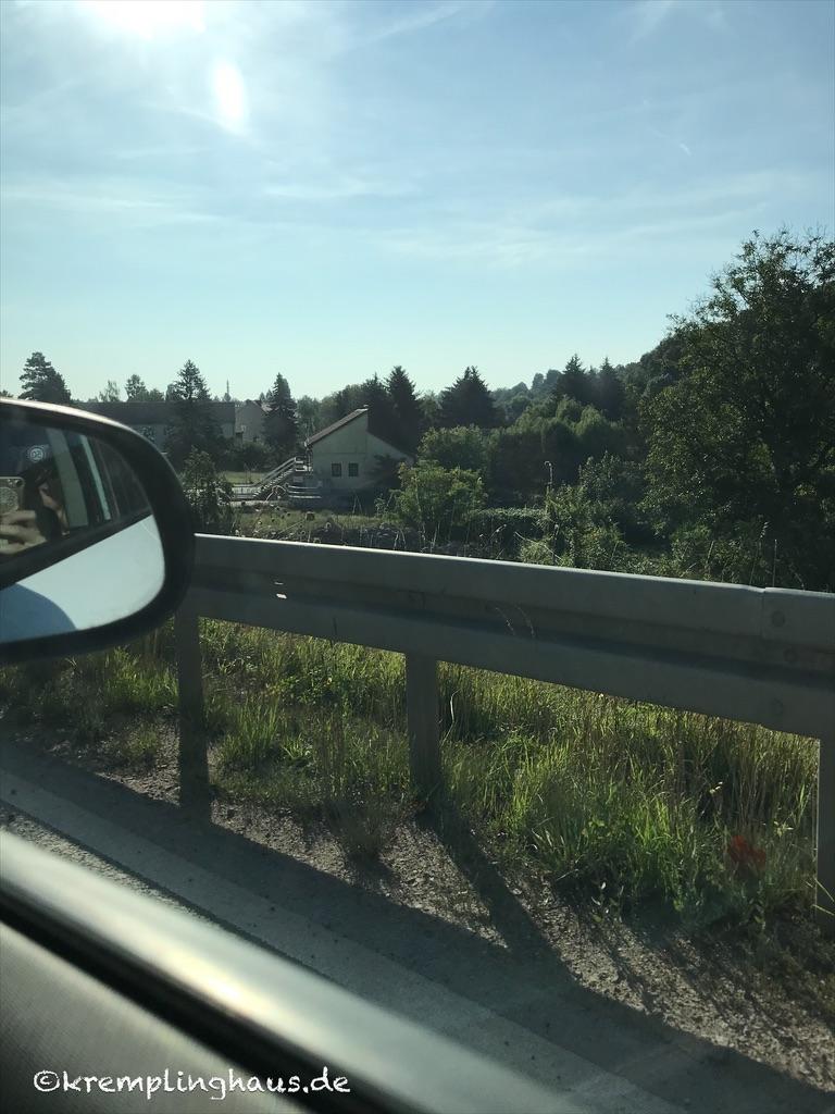 Blick aus dem Auto auf die Bäume unterwegs.